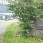 【トレラン】【review】 芦ノ湖畔と外輪山稜線(装備編)