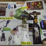 勝間塾2013夏期合宿「選択理論」「SF」(実践編)1日目ワークショップ