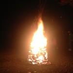 【速報】【キャンプ】道志の森キャンプ場【テントの中から】